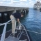 Merchant Marine Cadets Complete Internships With The Pilots